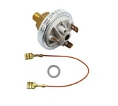 Worcester 87161051110 Water Pressure Switch